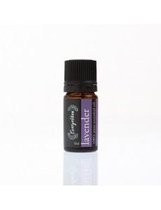 Essential oil  Lavender  5ml