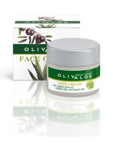 24 hours Face Cream Oily to Normal skin 40ml